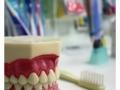 Impressionen der Praxisräume - Zahnarztpraxis Dr. Treuner - Bild 8