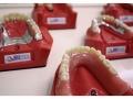 Impressionen der Praxisräume - Zahnarztpraxis Dr. Treuner - Bild 9